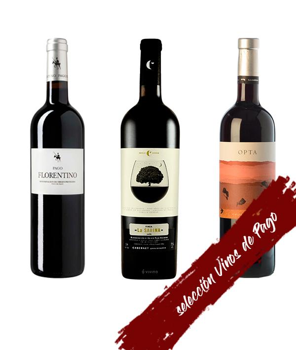 Selección vinos de Pago Terravino