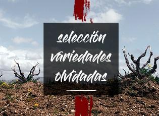Selección de variedades olvidadas Terravino